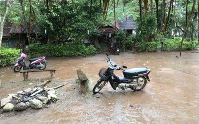 Skuterem po Tajlandii — praktyczne wskazówki