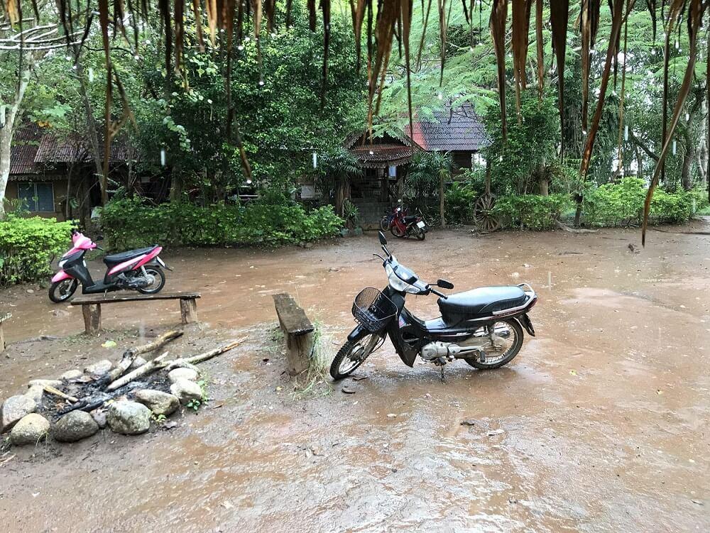 Skuter stojący w wodzie na tle dżungli